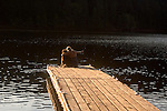 Woman and her dog sitting on the end of a dock, Sugar Pine Reservoir, near Foresthill California.