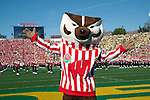 Wisconsin Badgers mascot Bucky Badger poses during the 2012 Rose Bowl NCAA football game against the Oregon Ducks in Pasadena, California on January 2, 2012. The Ducks won 45-38. (Photo by David Stluka)