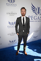 www.acepixs.com<br /> <br /> January 28 2017, Hallandale, FL<br /> <br /> Aaron Paul arriving at the Pegasus World Cup at Gulfstream Park on January 28, 2017 in Hallandale, Florida.<br /> <br /> By Line: Solar/ACE Pictures<br /> <br /> ACE Pictures Inc<br /> Tel: 6467670430<br /> Email: info@acepixs.com<br /> www.acepixs.com