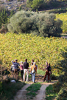 Chateau Mire l'Etang. La Clape. Languedoc. France. Europe. Group of people in the vineyard.