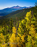 Autumn in the Rockies.  I came through Colorado's Rocky Mountain National Park recently, and though the fall colors weren't yet at their peak, there were some patches of brilliant aspens showing off their fall colors.  This view was along Trail Ridge Road west of Estes Park.<br /> <br /> Image ©2019 James D Peterson