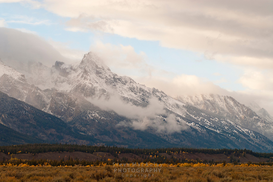 Grand Teton in light of clearing storm with fall colors in valley, Jackson WY.