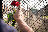 70th anniversary of Roma genocide. A rose is placed between the two electric fences