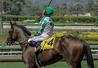 ARCADIA, CA. JUNE 17: #4 Sircat Sally ridden by Mike Smith after winning the Honeymoon Stakes (Grade ll) on June 17, 2017 at Santa Anita Park in Arcadia, CA(Photo by Casey Phillips/Eclipse Sportswire/Getty Images)
