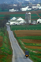AJ1127, Amish, Pennsylvania, buggy, Lancaster County, Pennsylvania, Amish horse and covered buggy traveling on a country road in the scenic Amish farmland of Pennsylvania Dutch Country.