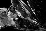 """Joe Allioti, center, works to haul in a catch of anchovies off the coast of Monterey, CA on Monday, January 29, 2007. Joe and his brother Domenic operate their fishing boat """"Allioti Brothers,"""" and are the third generation of their Italian-American family to fish the Monterey Bay."""