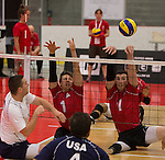 Sitting Volleyball Nomination
