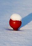 HILVERSUM - De baan van de Hilversumse Golfclub besneeuwd. COPYRIGHT KOEN SUYK