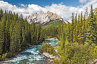 The Maligne River winding its way towards Grisette Mountain in Jasper National Park.  The strata of the limestone of the Queen Elizabeth Range fascinates me.