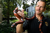 Robert Norris, Stanford Chief of Emergency Medicine with snakes.