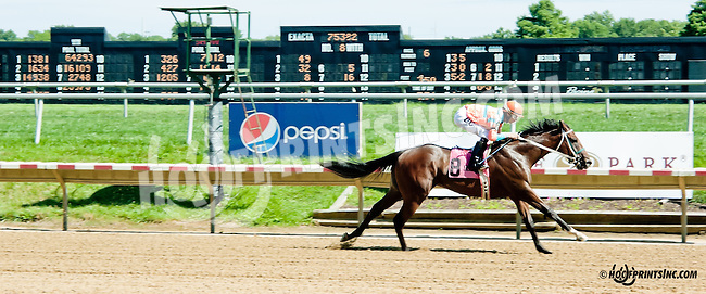 Long On Value winning The Strike Your Colors Stakes at Delaware Park on 7/29/13