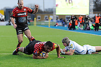 20130216 Copyright onEdition 2013©.Free for editorial use image, please credit: onEdition..Mako Vunipola of Saracens picks himself up just short of the line to score his second try during the Premiership Rugby match between Saracens and Exeter Chiefs at Allianz Park on Saturday 16th February 2013 (Photo by Rob Munro)..For press contacts contact: Sam Feasey at brandRapport on M: +44 (0)7717 757114 E: SFeasey@brand-rapport.com..If you require a higher resolution image or you have any other onEdition photographic enquiries, please contact onEdition on 0845 900 2 900 or email info@onEdition.com.This image is copyright onEdition 2013©..This image has been supplied by onEdition and must be credited onEdition. The author is asserting his full Moral rights in relation to the publication of this image. Rights for onward transmission of any image or file is not granted or implied. Changing or deleting Copyright information is illegal as specified in the Copyright, Design and Patents Act 1988. If you are in any way unsure of your right to publish this image please contact onEdition on 0845 900 2 900 or email info@onEdition.com