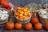 Pumpkins, squash and colorful fall vegetables in baskets for sale