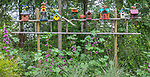 Vashon-Maury Island, WA: Colorful birdhouses and birds perched on a ladder in a perennial garden