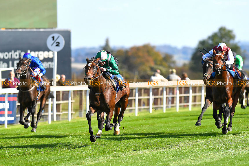 Winner of The PKF Francis Clark EBF Novice Stakes Div 1   Kaloor ridden by Jim Crowley and trained by Brian Meehan during Afternoon Racing at Salisbury Racecourse on 3rd October 2018