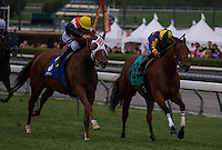 Broken Dreams (3) winner of the Senator Ken Maddy Stakes at Santa Anita Park in Arcadia, California on October 20, 2012.