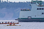 Open water rowing and paddling, Rat Island Race, Port Townsend, Puget Sound, Washington State, USA, June 29, 2013, Sound Rowers, Port Townsend, Pourhouse Pub, the Cribbage payers, Puget Sound, Washington State, USA