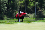 Gainesville, VA - August 2, 2015:  Tiger Woods lines up a putt on the eleventh hole at the Robert Trent Jones Golf Club in Gainesville, VA. August 2, 2015. Tiger finished the tournament -8 after being tied for second following round two. (Photo by Philip Peters/Media Images International)