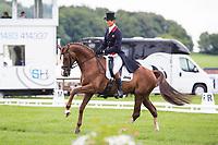 GBR-William Fox-Pitt (CHILLI MORNING) INTERIM-1ST: CIC3* DRESSAGE: 2014 GBR-Equitrek Bramham International Horse Trial (Thursday 5 June) CREDIT: Libby Law COPYRIGHT: LIBBY LAW PHOTOGRAPHY - NZL