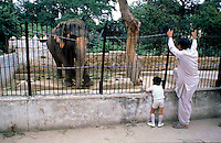 Pakistan  Karachi 1986..Father and child in the zoo look at an elephant.