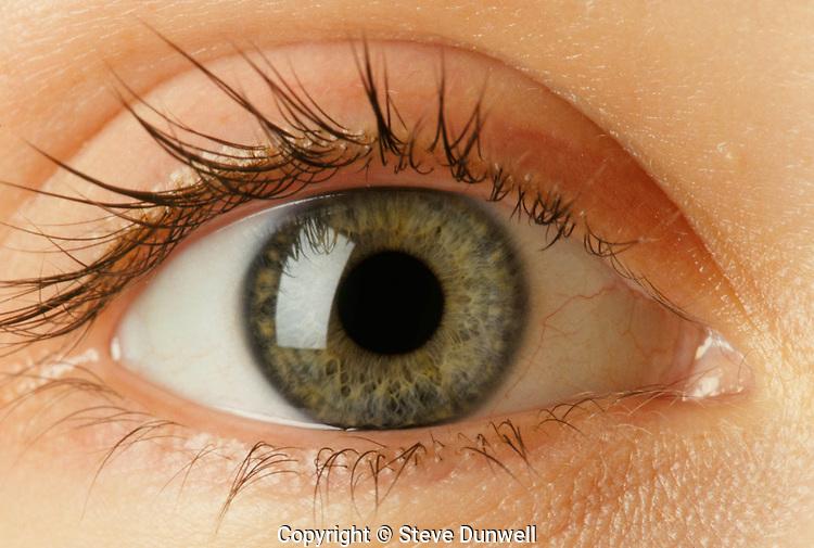 Close-up hazel eye, Boston