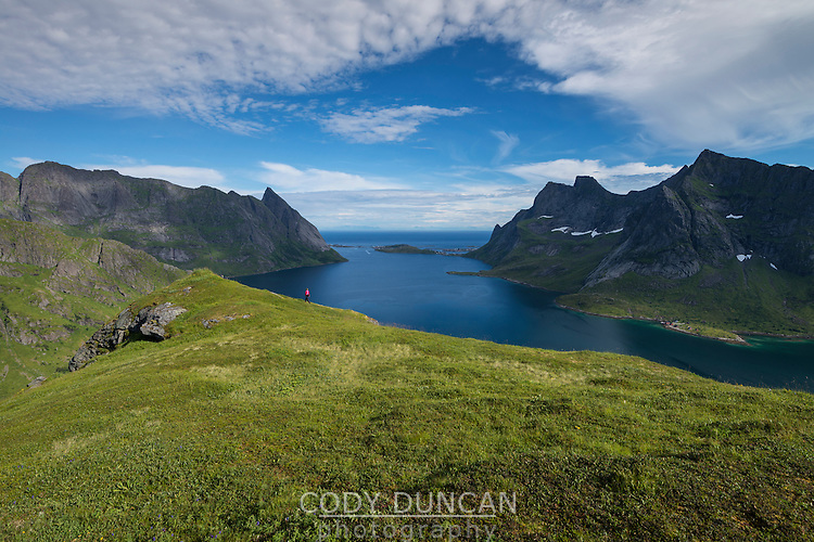 Female hiker walks along hillside above Reinefjord, Moskenesøy, Lofoten Islands, Norway