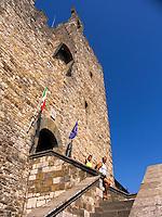 Fortress Rocca, castle in Castellina, Ital