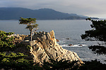 Cities:  Pebble Beach & Carmel