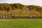 Visitors to Horton Vineyards pose for photos on the front lawn, next to the surrounding vineyards.