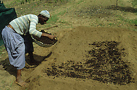 Farmer fertilizing his field with self-made compost