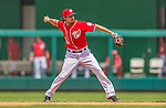 9 June 2013: Washington Nationals infielder Anthony Rendon in action against the Minnesota Twins at Nationals Park in Washington, DC. The Nationals shut out the Twins 7-0 in the first game of their day/night double-header. Mandatory Credit: Ed Wolfstein Photo *** RAW (NEF) Image File Available ***