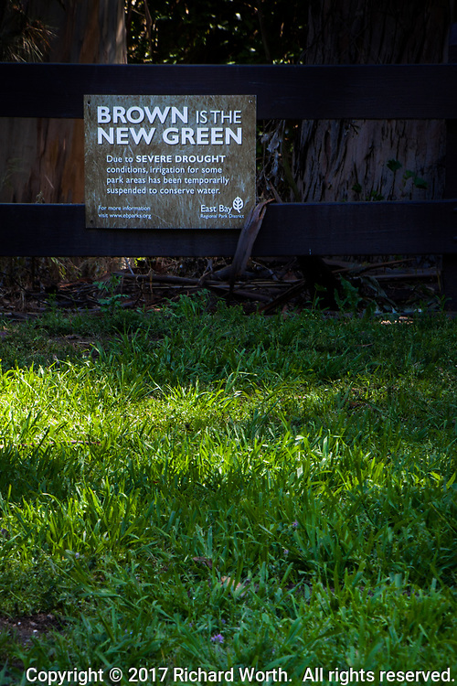 "A holdover from the years of drought, a sign proclaiming ""Brown is the New Green"" stands over green grass at a regional park."