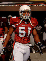 Nov. 6, 2005; Tempe, AZ, USA; Linebacker (51) James Darling of the Arizona Cardinals against the Seattle Seahawks at Sun Devil Stadium. Mandatory Credit: Mark J. Rebilas