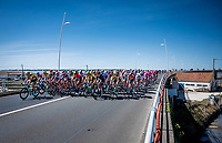 peloton crossing the viaduct that connects the island of Oléron to the mainland<br /> <br /> Stage 10 from île d'Oléron (Le Château-d'Oléron) to Île de Ré (Saint-Martin-de-Ré)(169km)<br /> <br /> 107th Tour de France 2020 (2.UWT)<br /> (the 'postponed edition' held in september)<br /> <br /> ©kramon