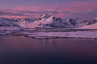 Pink sunrise over mountains and fjord, Moskenesøy, Lofoten Islands, Norway