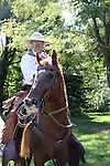 A western cowboy and horse