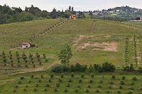 Paesaggio di campagna a Portacomaro