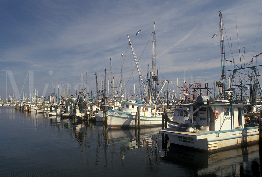 shrimp boat, Mississippi, MS, Christian, Shrimp boats docked in the harbor of the Gulf of Mexico in Christian.