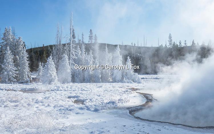 Yellowstone winter is beautiful.