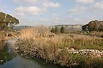Israel, Carmel Coast Plain. Taninim stream nature reserve