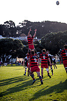 180526 Wellington Swindale Shield Rugby - Poneke v Petone