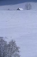 Europe/France/Rhône-Alpes/38/Isère/Env de Méaudre: Ferme dans la neige