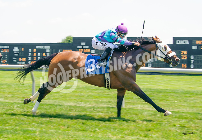 Take It Inside winning at Delaware Park on 6/25/16