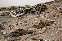 Wednesday 15 July, 2015: Corpses of goats lay beside a truck hit by a granade along the road to Sa'dah, a city subdued to heavy bombarments carried out by the Saudi-led coalition in the northern province of Sa'dah, the stronghold of the Houthi's movement in Yemen. (Photo/Narciso Contreras)