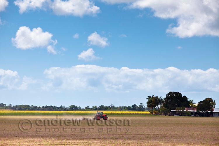 Tractor ploughing cane field.  Proserpine, Queensland, Australia