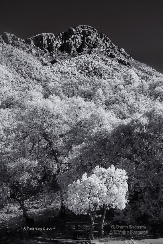 Mount Wrightson, Santa Cruz County, Arizona (Infrared)