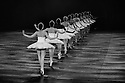 London, UK. 31.05.2016. English National Ballet presents SWAN LAKE in the round at the Royal Albert Hall. Picture shows: Artists of the company (swans). Photograph © Jane Hobson.