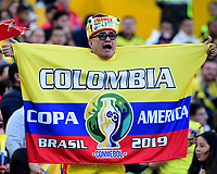 BOGOTA - COLOMBIA, 03-06-2019: Hinchas de Colombia animan a su equipo durante partido amistoso entre Colombia y Panamá jugado en el estadio El Campín en Bogotá, Colombia. / Fans of Colombia cheer for their team during a friendly match between Colombia and Panama played at Estadio El Campin in Bogota, Colombia. Photo: VizzorImage / Nelson Rios / Cont
