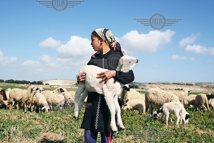 A young shepherd girl looks after her flock of sheep near the village of Tlaha.