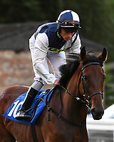 Standing Rock ridden by Kieran Shoemark goes down to the start during Ladies Evening Racing at Salisbury Racecourse on 15th July 2017